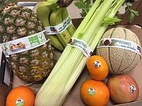Etichette e nastri adesivi biodegradabili e compostabili